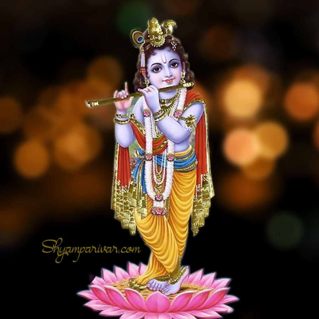 Lord Krishna photos & images