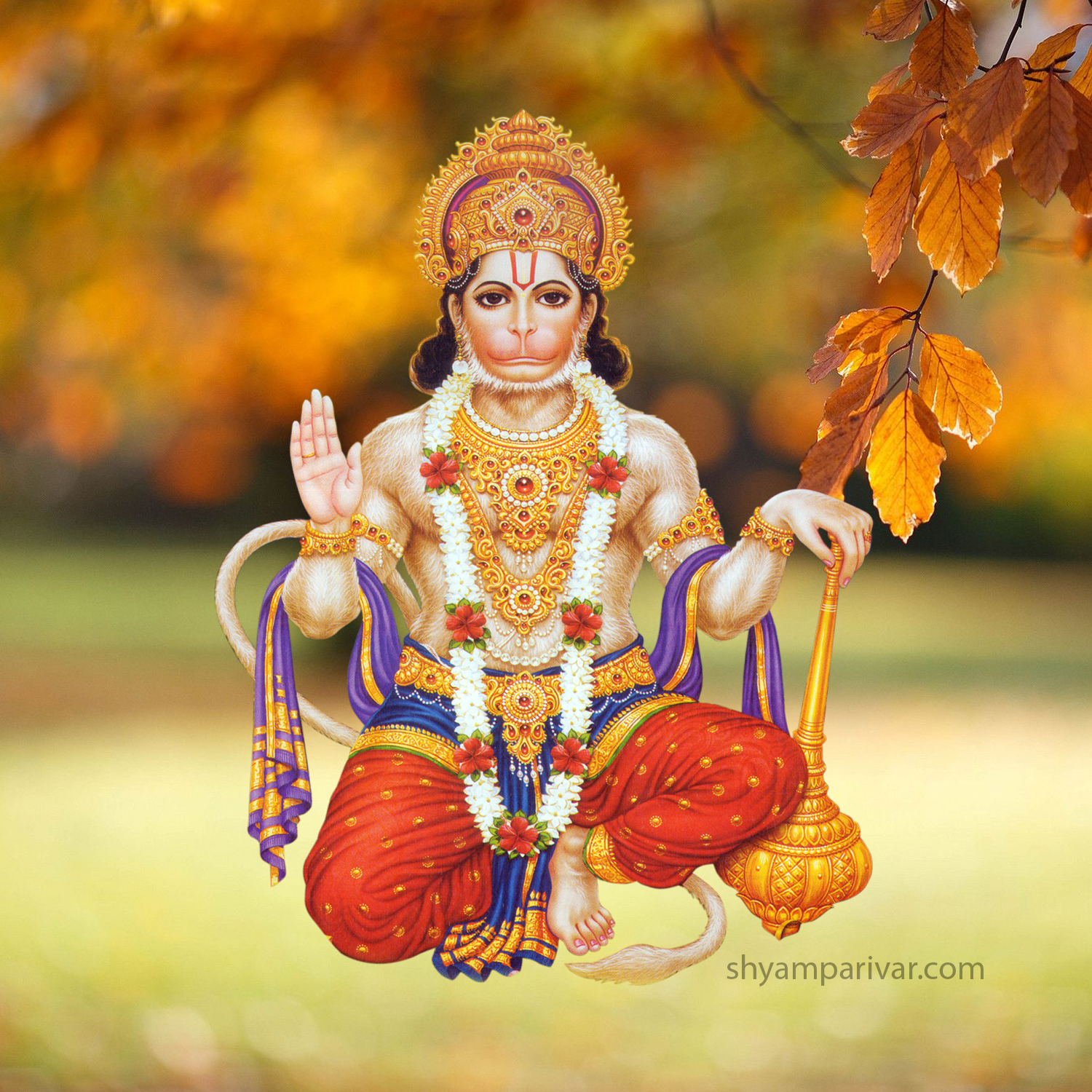 Hanuman ji photo png