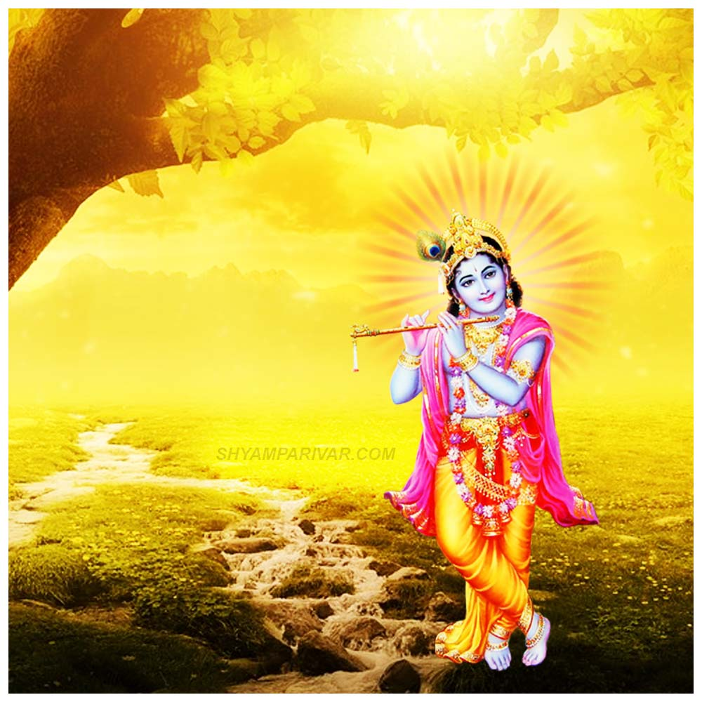 krishna-image-1